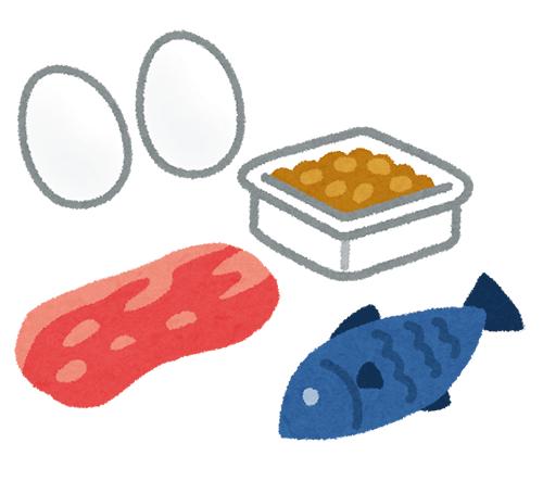 たんぱく質を多く含む食材(イメージ)