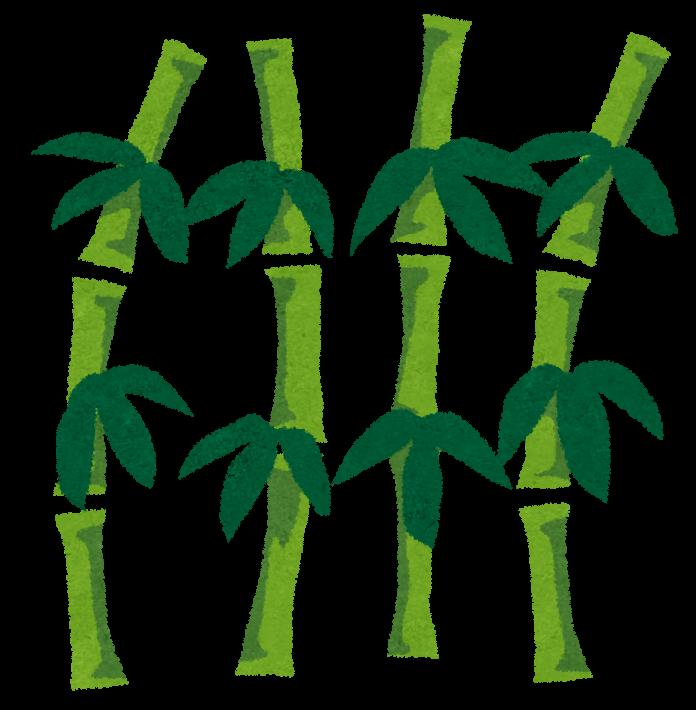 竹(イメージ)