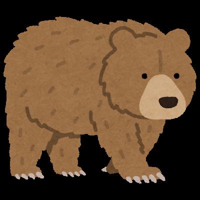 『クマ』を選んだあなたは・・・
